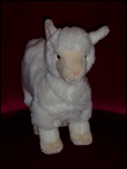 Alpaga blanc