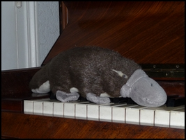 Aussi surnommé Platypus
